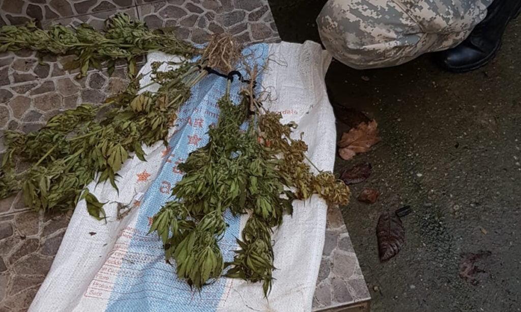Maramureșean arestat preventiv pentru trafic de droguri VIDEO