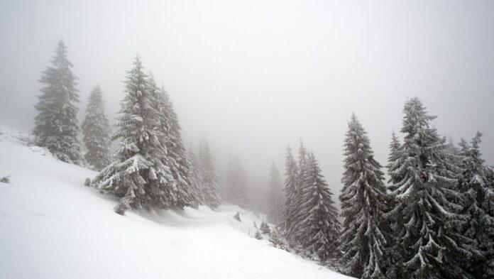 Informare meteo de ninsori și intensificări ale vântului